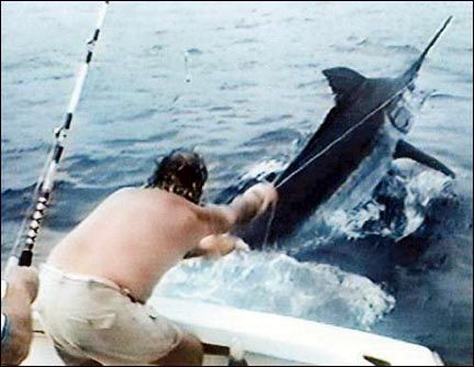 17 best ideas about sea fishing on pinterest | england, england, Reel Combo