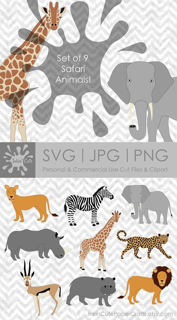 Pin On Animal Clipart Svg Cut Files