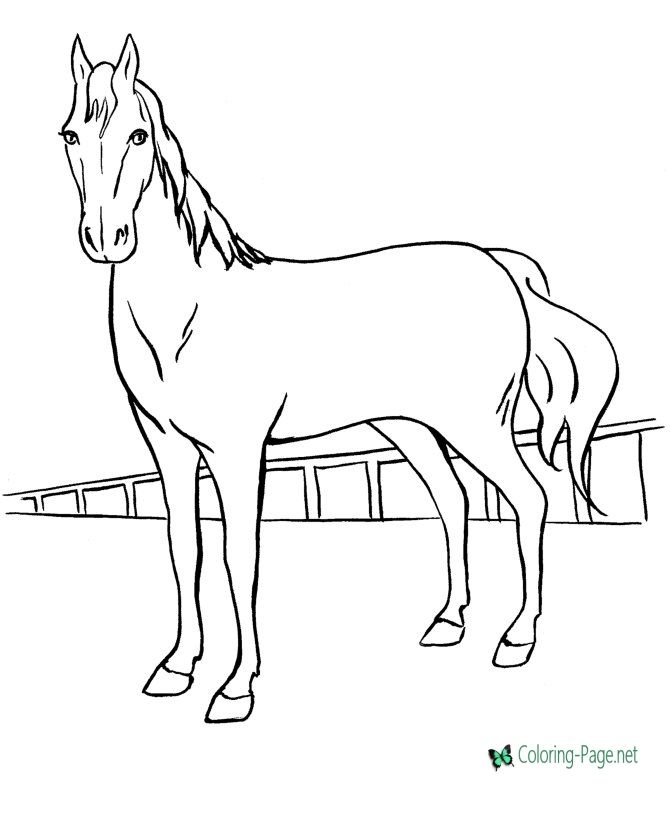 40 Horse Coloring Pages Horse Pony Printables Horse Coloring