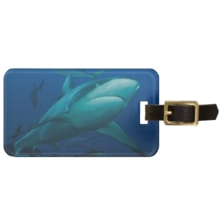 Just sold 2 reef shark luggage tags :)