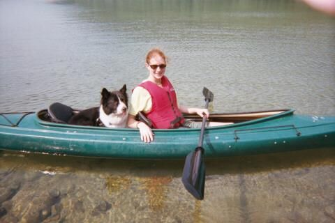 Best Dog Friendly Camping Acadia National Park