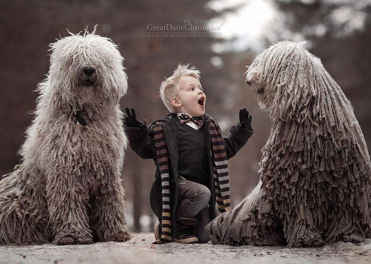 Les images féeriques de ce très gros chien, jouant dans la neige avec son tout petit propriétaire, vont vous émerveiller