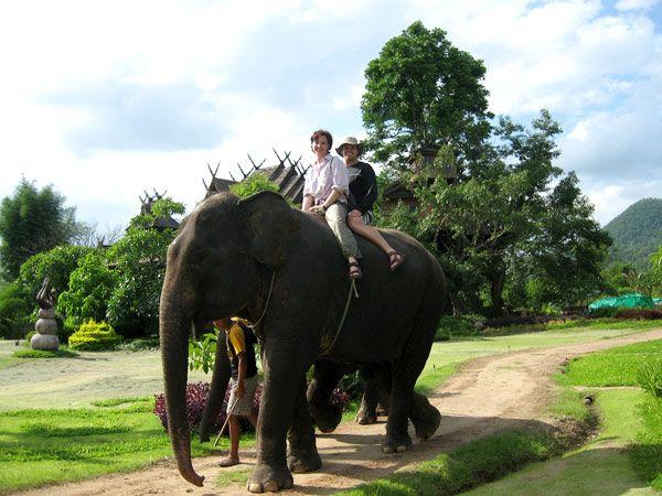 thailand, riding elephants. Done!