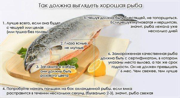 Как выбрать действительно свежую рыбу? Это нужно знать
