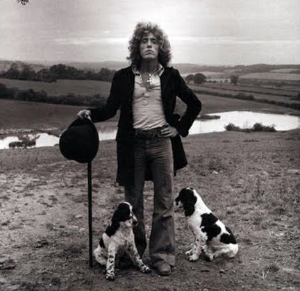 Roger Daltrey of The Who with his adorable Springer Spaniel puppiesMusicians 1950, Classic Rocks, Rocks Stars, Springer Spaniels, Terry Oneill, Rogers Daltry, Rogers Daltrey, People, Terry O' Neil