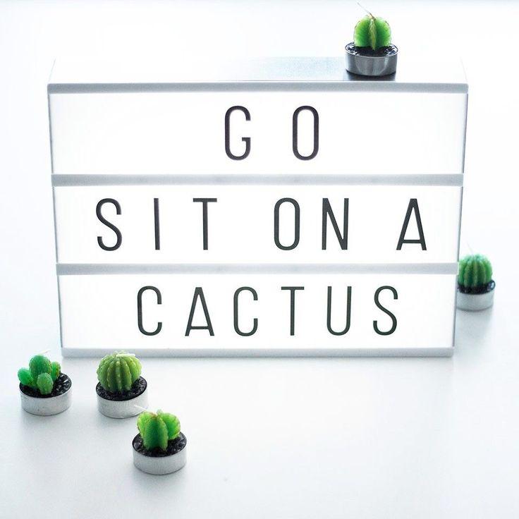 go sit on a cactus
