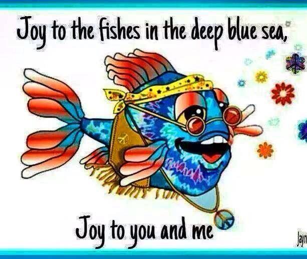 joy to all ...