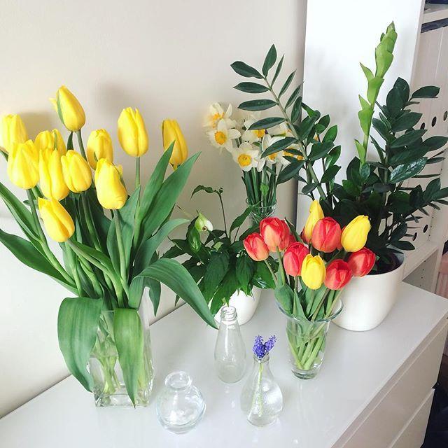 Jak ja lubię dostawać kwiaty 💛🌻🌷 🌺🌸🌹💐 #spring #summer #flowers  #kwiatki #tulipany #easter #swieta #wiosna #wielkanoc #bukiet #kwiaty #tulip #plants #interior #home #presents #yellow ❤️💛🌻🌼🌺🌸🌷🌹💐 a za oknem śnieg ❄️❄️❄️