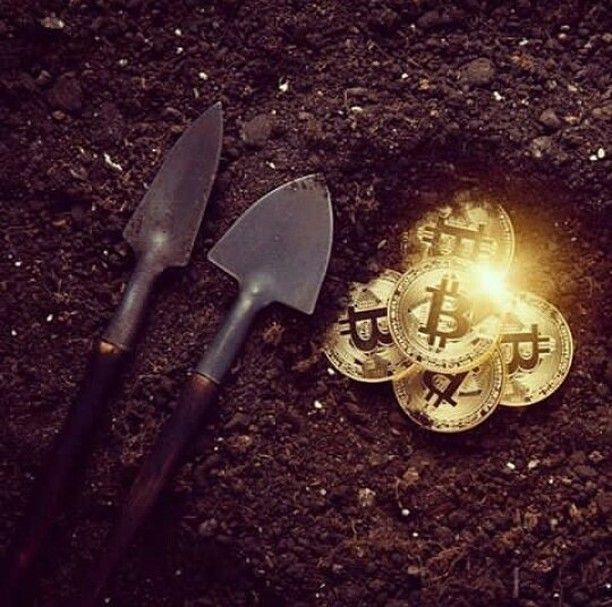 Mining of Bitcoin is the best way to acquire Bitcoins rather than wait for it's value to increase overtime. DM me for more Info. #bitcoins #profits #dollar #million #American #lifestyle #entrepreneur #ico #btc #cryptocurrency #makemoney #millionaire #billionaire #rich via @jessica_btc_miner
