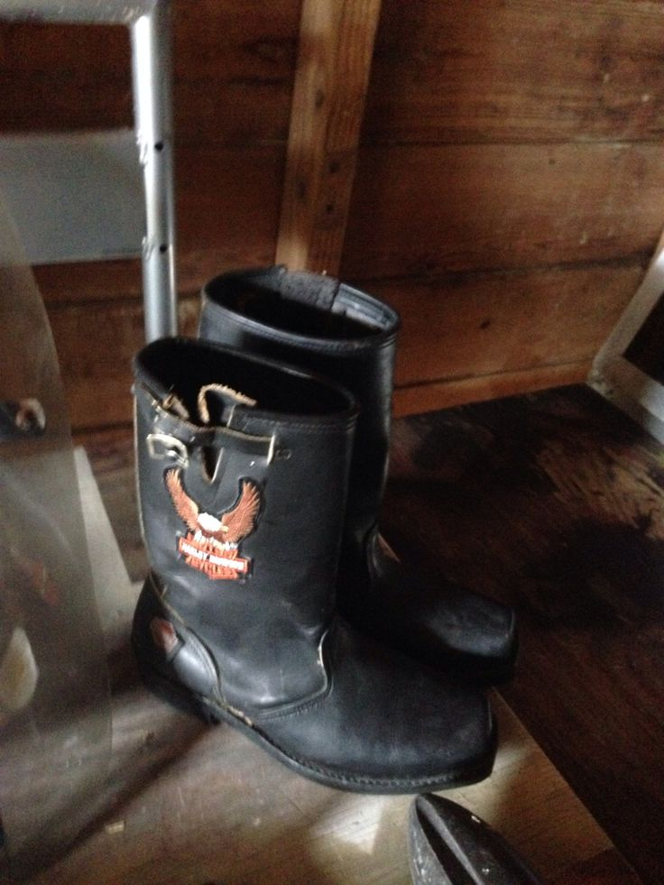 Harley Davidson in Save's Garage Sale in San Antonio , TX for $100.00. Harley Davidson Riding Boots
