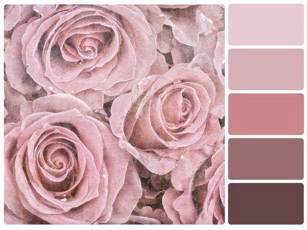 Altrosa Schlafzimmer Decor: Ideen für Farbkombinationen als Wandfarbe – Altrosa schlafzimmer