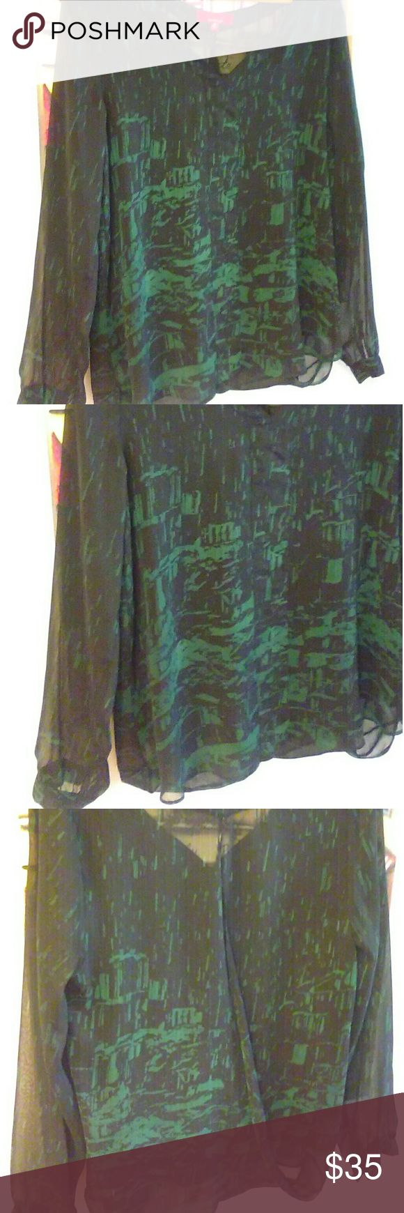 Sale!! Black & Green sheer lined open back blouse NWOT  Lined body, sheer long sleeves with one button. V neckline, open back depending on how you wear it.  Front is lined, back is sheer. New with no tags.  Brand is RED by Saks Saks Fifth Avenue Tops Blouses