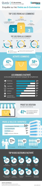 Infographie | La rentabilité, principal frein au lancement d'une activité e-commerce