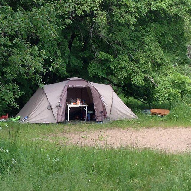 Сттоянки на берегу - палатки можно уютно разместить в тени деревьев.  С палатками на Селигер - это к нам! Любите активный отдых - тоже к нам!  У нас #рыбалка #байдарки #велосипеды #тихийуголок.  #кемпинг #селигер #отдых #озеро #туризм #путешествия #активныйотдых #выходные #туристам #рыбакам #отдыхающим #путешественникам #природароссии #фото #природа #палатки #походы