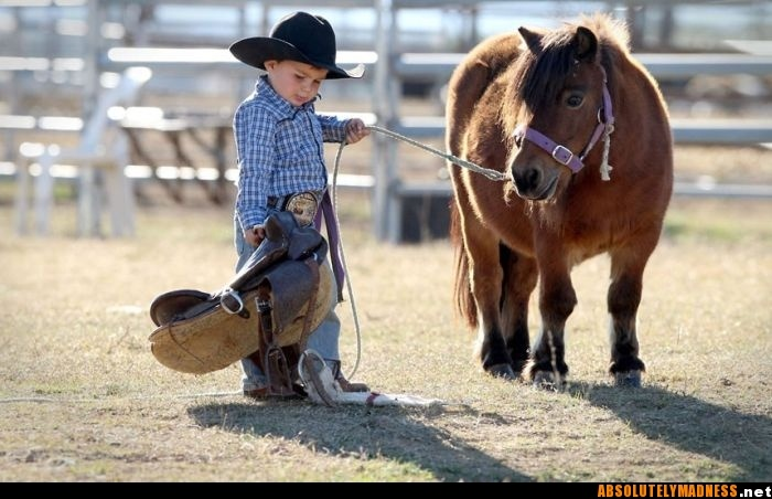 : Saddle, Miniatures Hors, Be- Cowboys, Ponies, Cowboys Up, 2 Years Old, Little Cowboys, Little Boys, Kid