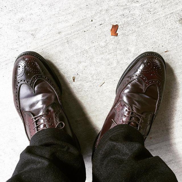 dekacho today's shoes#aldenshoes #lifeisgood 2016/11/08 02:20:35