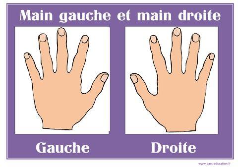 Main gauche - Main droite - Affichages pour la classe – Maternelle – PS – MS – GS - Pass Education