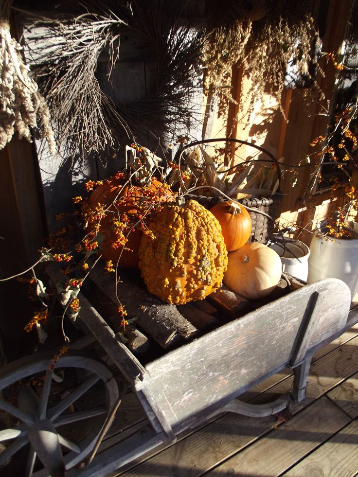 Primitive fall decorating. Warty pumpkin gourds, my favorite!!