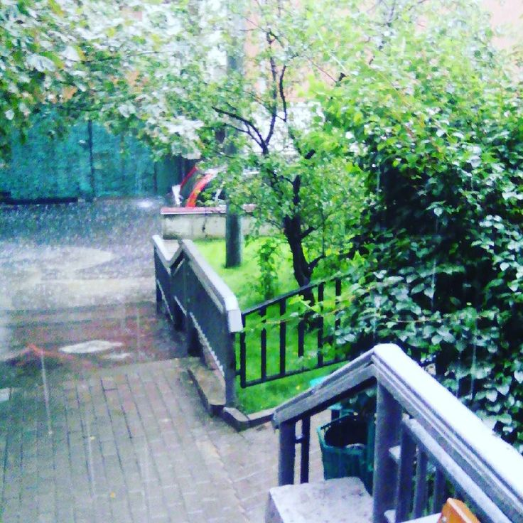 Все дела после дождичка в четверг ;) #деньвосьмой #дождь #двор #фотоблог  Хотите выиграть вкусный тортик !? Подпишись на @twinscakeru и жди розыгрыша.