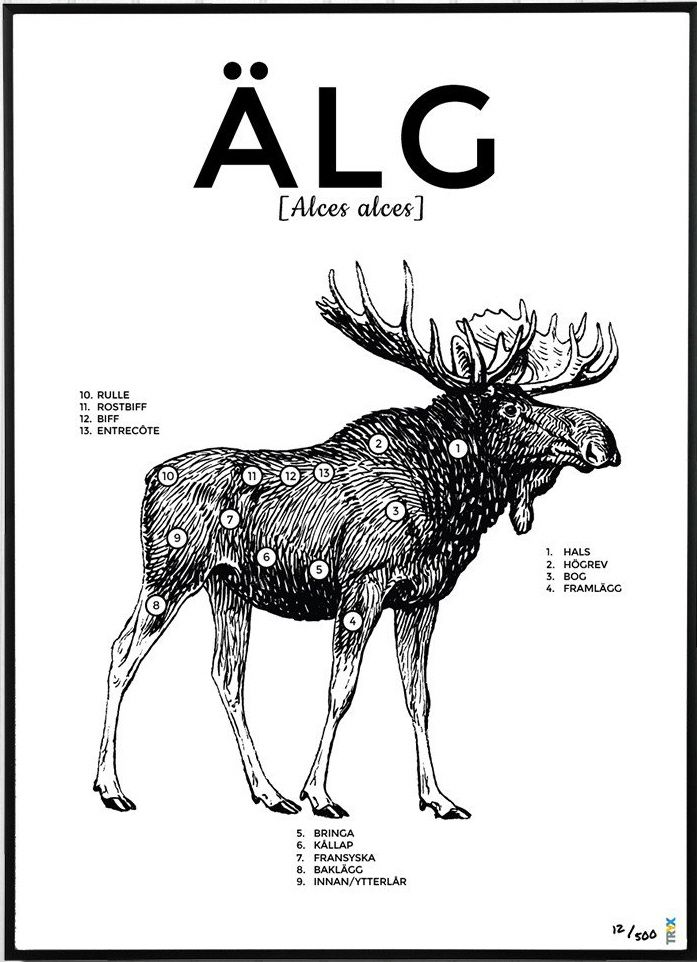 Moose Diagram Of Cuts - Collection Of Wiring Diagram •