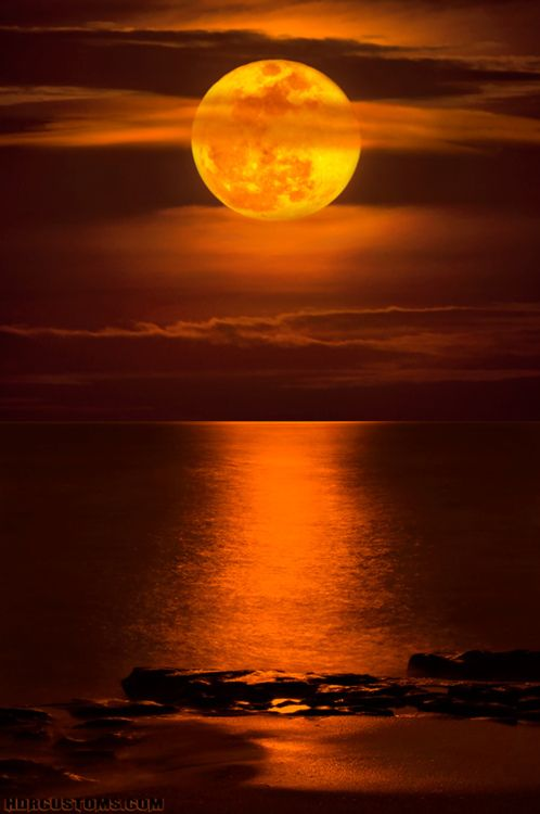 Supermoon rising over Carlin Park Beach in Jupiter, Florida (by HDRcustoms)
