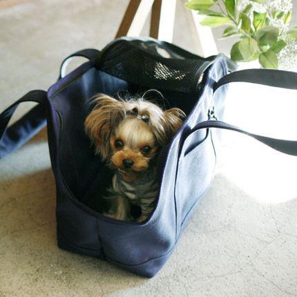 【楽天市場】【犬 キャリーバッグ】犬用 スクエアトート Mサイズ【キャリーバック carry bag free stitch】:free stitch