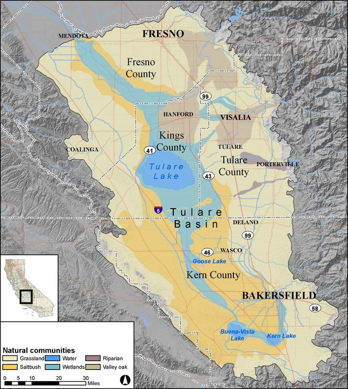 the tulare basin historically supported an amazing complex of wetland habitats unique in the world this largely flat and arid region served as the