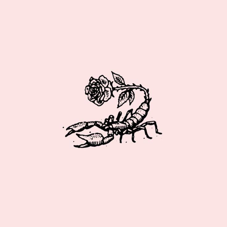 Scorpione - Tobillo derecho parte externa O antebrazo derecho