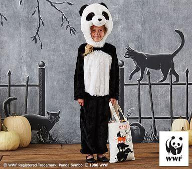 Endangered Panda Costume, 7-8