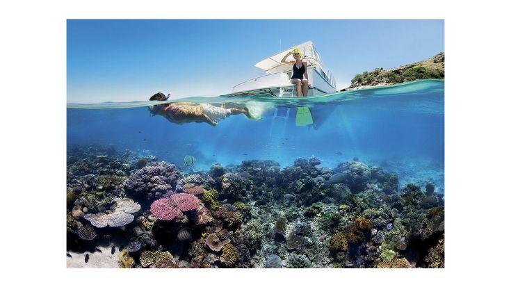 Bucear en la Gran Barrera de Coral de Australia.