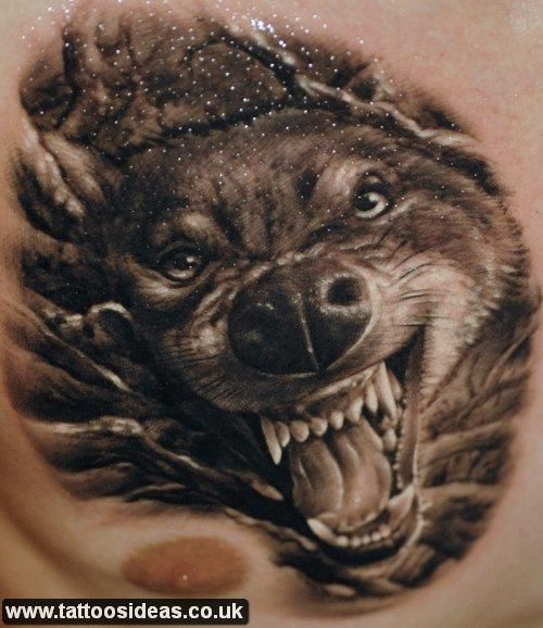 wolf chest tattoo | Wolf Tattoo | Pinterest | Wolves, Tattoos and body ... Angry Black Wolf Drawing