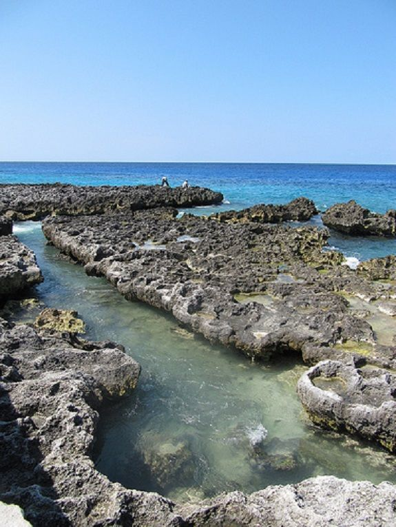 90 Best Cayman Islands Images On Pinterest Cayman Islands Grand Cayman And Travel Ideas
