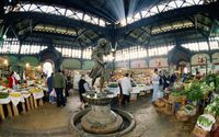 Nos restaurantes do Mercado Central, prove o congrio, peixe do Oceano Pacífico. Foto: Getty Images
