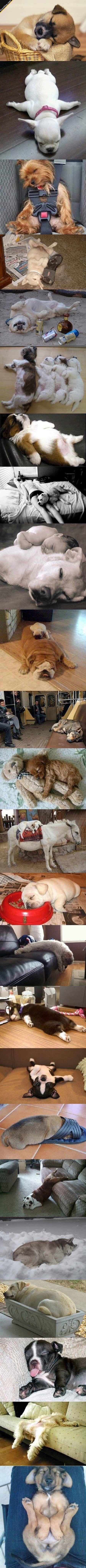 Sweet Dreams!!!!