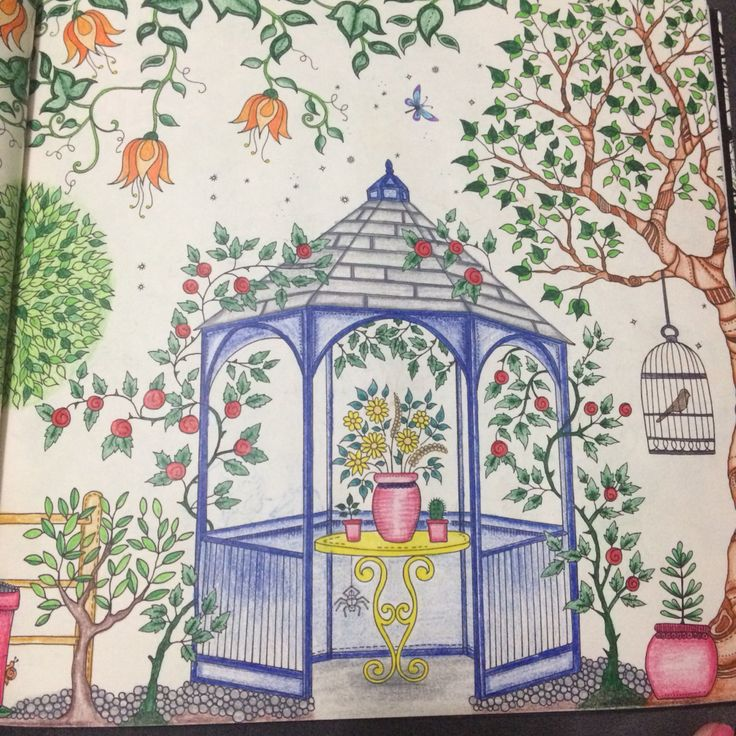 Secret Garden Coloring Pages Completed Definition