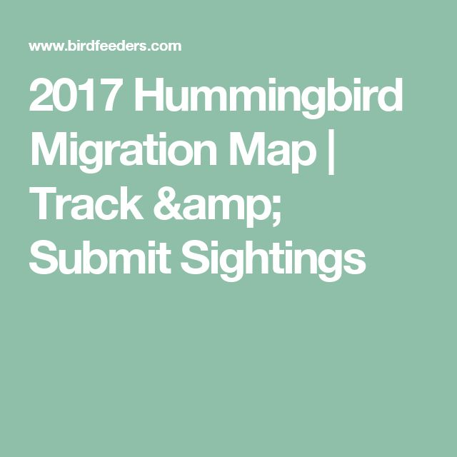 2017 Hummingbird Migration Map   Track & Submit Sightings