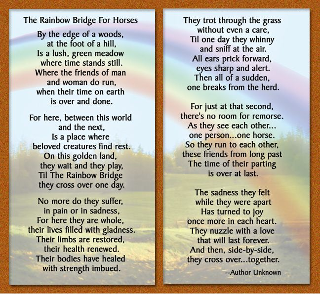 horses in heaven pictures and quotes | Such a beautiful array of choices to celebrate the life of our ...