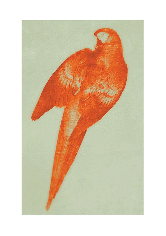 Leary Red Orange Parrot Print by Finandivy on Etsy, $25.00