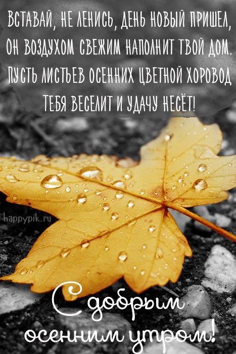 Новорожденные, картинки про дождь и осень с надписями