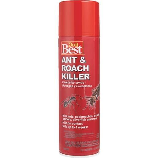 Best 25+ Roach killer ideas on Pinterest | Roach remedies, Roaches ...