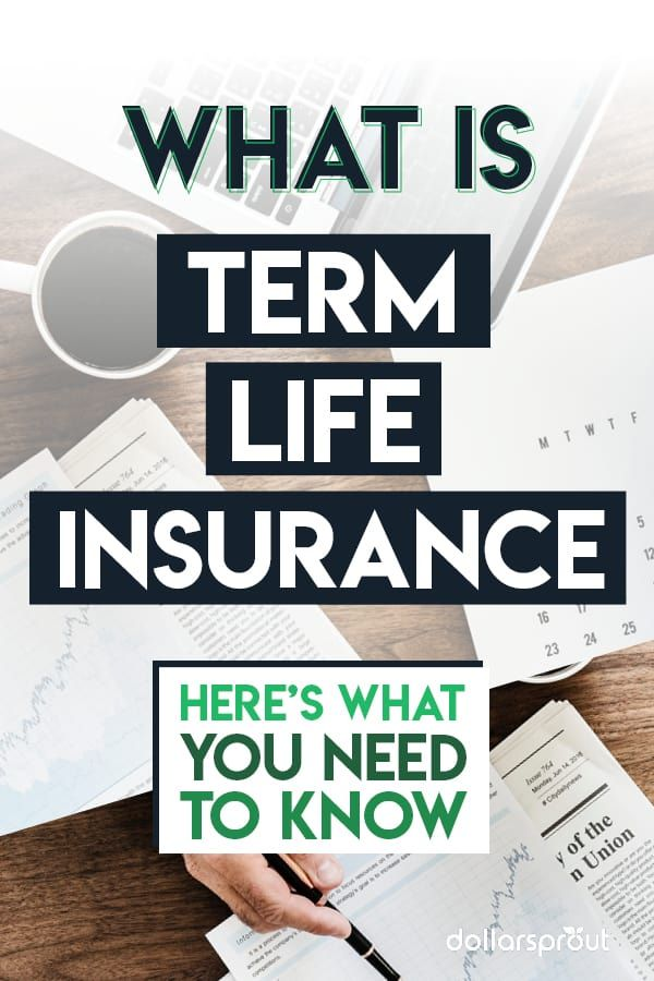 What Is Term Life Insurance And Do You Need It With Images