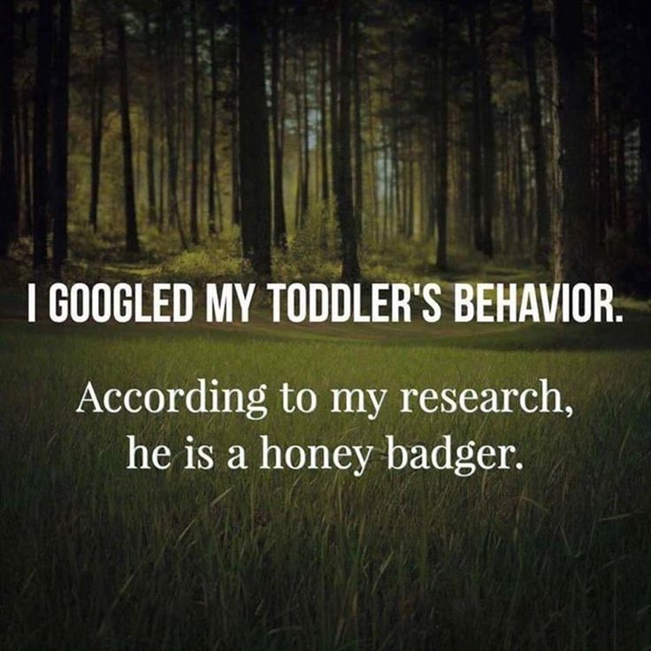 toddlers funny kids
