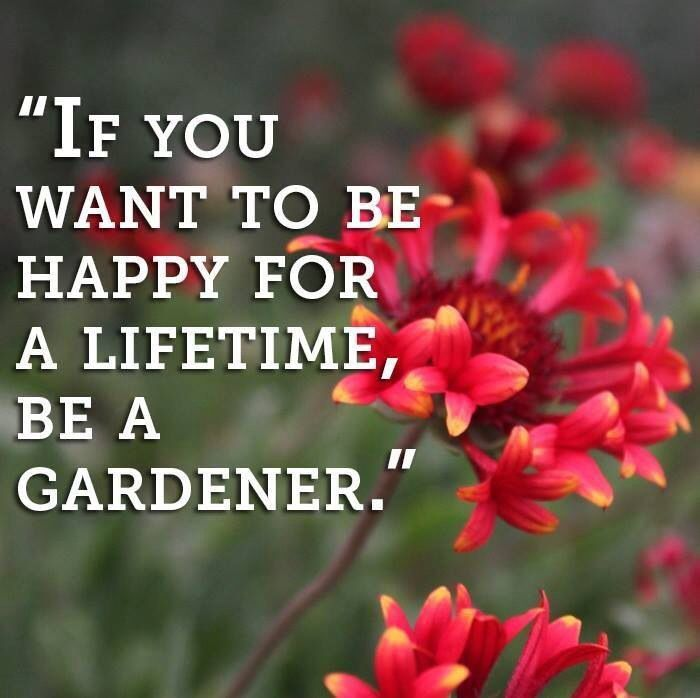 Find your favorite gardening quote from some of history's most famous gardeners -- who even share some interesting quotes about life as it applies to the garden. Description from pinterest.com. I searched for this on bing.com/images