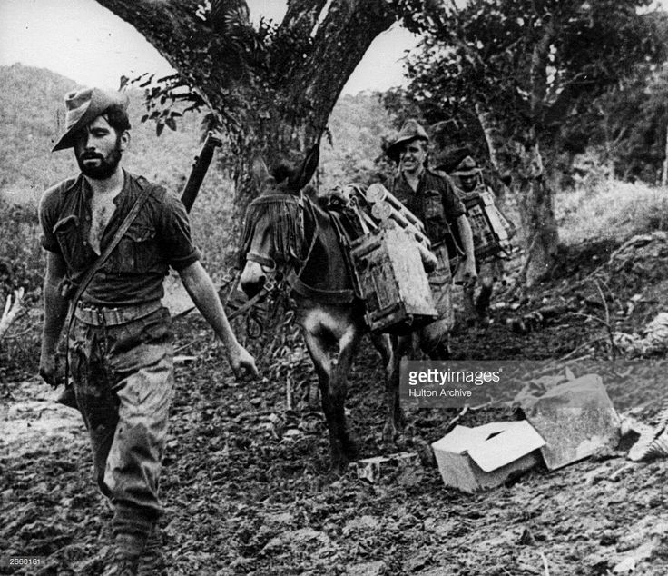 Chindits (members of General Orde Wingate's Allied commando force in Burma) travelling through the jungle with their donkeys.