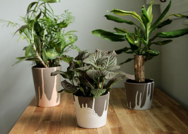 DIY: paint dipped ceramic pots.