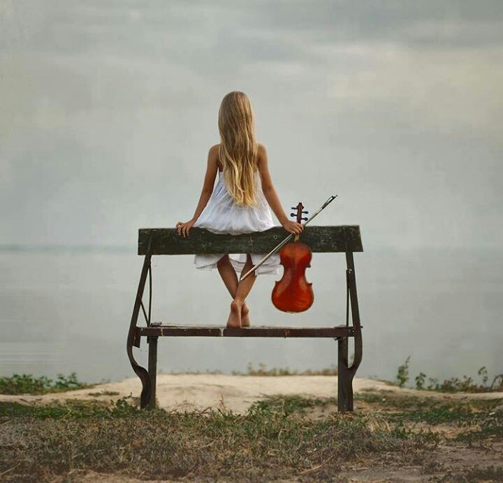 Violin. Chic and Antique.