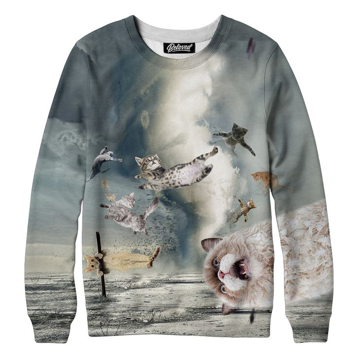 Catnado Sweatshirt from Beloved Shirts