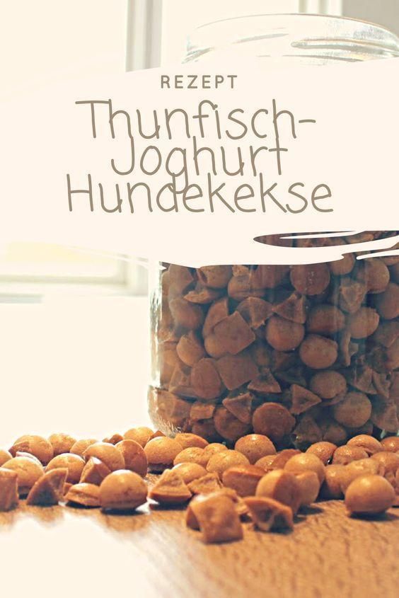 Hunde Leckerchen, Hundekekse selber backen, Thunfisch Joghurt Kekse für den Hund, #Hund #Hunde ##rezept – eva hölscher