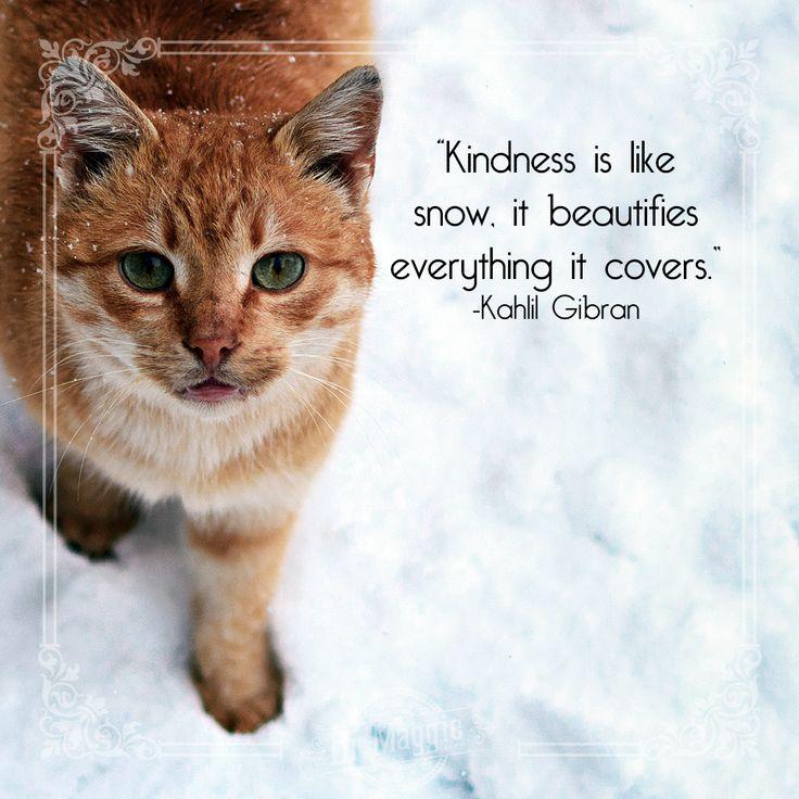 Spread the love! #motivationmonday #kindness