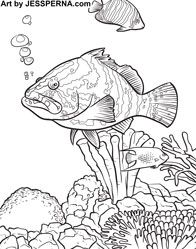 101 best Marine life coloring pages images on Pinterest ...